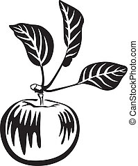 Black and white apple - Image of black and white apple with...
