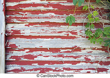 Old Red Barn with Peeling Paint and Vines - Old Red Barn...
