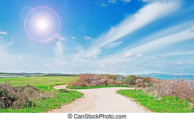dirt road and sun - dirt road by the shore and sun in spring
