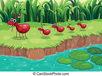 A colony of red ants at the riverbank - Illustration of a...