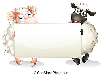 Two sheeps holding an empty banner - Illustration of the two...