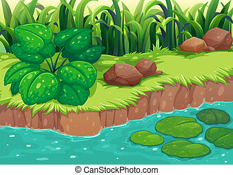 Green plants along the river - Illustration of the green...