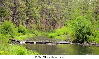 Peaceful Deschutes River - Deschutes River in central Oregon...