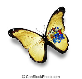 New Jersey flag butterfly, isolated on white