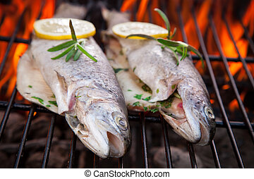 Grilled trouts - Delicious grilled trouts on fire