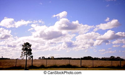 victoria country side in Australia - country side with...