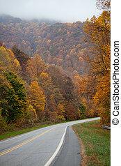 Road through autumn trees - Mountain road traveling through...