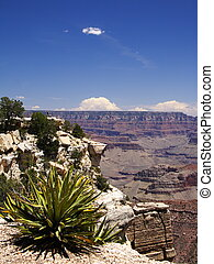 Grand Canyon - View down Grand Canyon from south rim, USA
