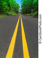 double yellow line - double yellow line road through forest...
