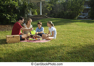 Family having picnic - Caucasian family of four having...