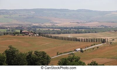 Tuscany Landscape with Cypress tree - Tuscany Landscape...