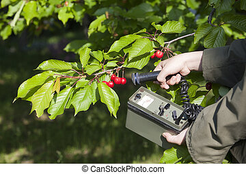 measuring radiation - Measuring radiation levels of fruits