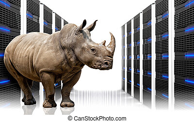 safe server - rhino in  datacentre with lots of server
