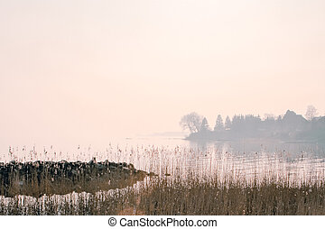 lake bank - A lake bank on a foggy morning in the october
