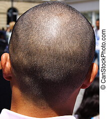 Shaved head - Back of a shaved head in a crowd watching a...