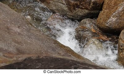 Flowing water - A small stream flowing water.