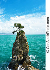Ligurian coast in Italy