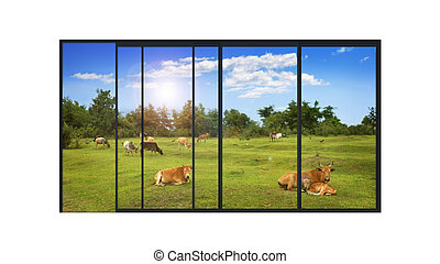 panoramic modern window with a rural landscape - isolated...