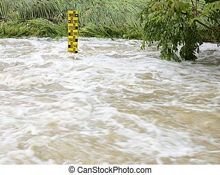 Water Level - Water level at an overflowing river