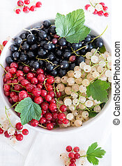 Mixed currants in a bowl, selective focus