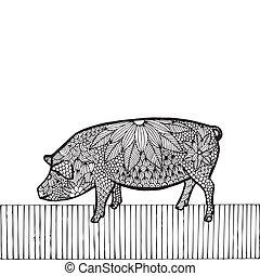 Black Pig- Chinese zodiac - Black Pig- Chinese zodiac, black...