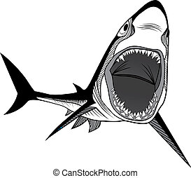 Shark fish head symbol for mascot o