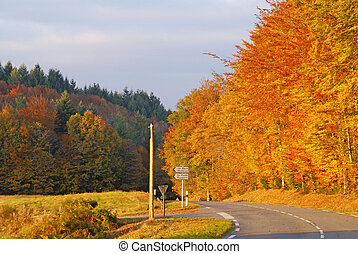 Autumn colours near the village of Correze. Limousin....