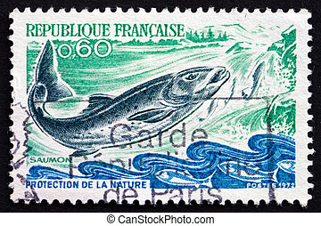 Postage stamp France 1972 Salmon, Salmo Salar, Fish - FRANCE...