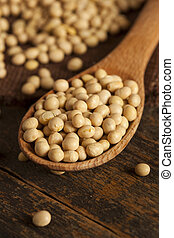 Organic Dry Soy Beans - Raw Organic Dry Soy Beans against a...