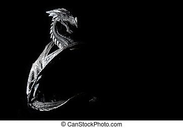 Dragon - Mystical Dragon on black background