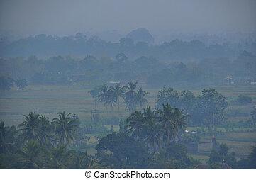 village in morning fog