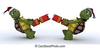 tortoise pulling christmas cracker - 3D render of a tortoise...