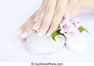 woman hands with beautiful french manicure nails and flower