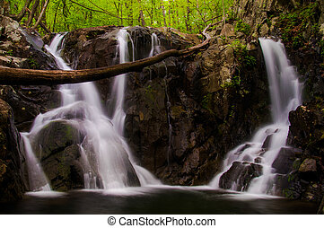 Rose River Falls, seen during spring in Shenandoah National Park, Virginia.
