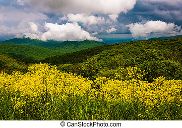 Spring view of the Appalachians from Skyline Drive in Shenandoah National Park, Virginia