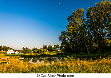 Pond and trees on a farm in rural York County, Pennsylvania.