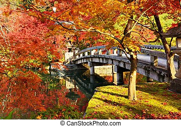 Fall Foliage in Kyoto - Fall foliage at Eikando Temple in...