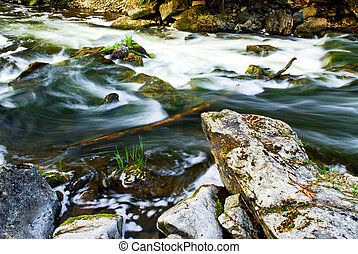 River through woods - Water rushing among rocks in river...