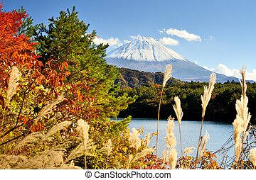 Mt Fuji in the Autumn - Mt Fuji and autumn foliage at Lake...