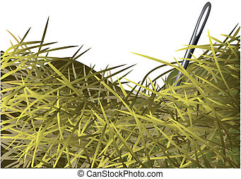 needle in a haystack on white background