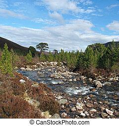 Cairngorms mountains, Gleann Laoigh Bheag, Scotland in...