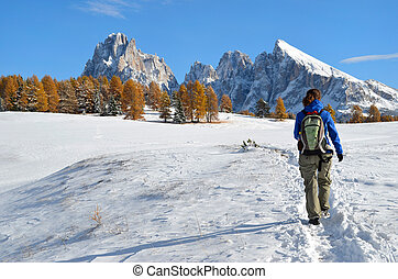 Hiking in the Dolomites in autumn - Female tourist hiking on...