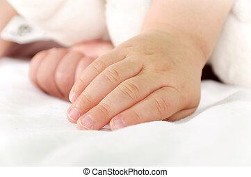 pequeno, mão