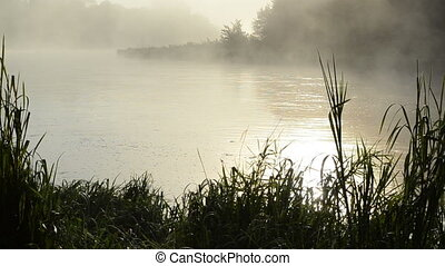 sunrise river water fog