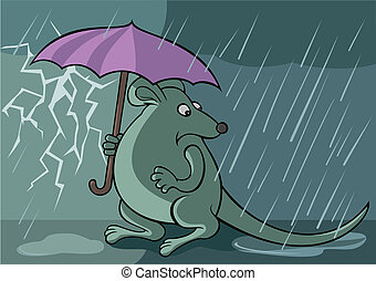 Frightened rat with unbrella under the rain