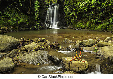 River Rocks - Rocky river in a rain forest with a waterfall...