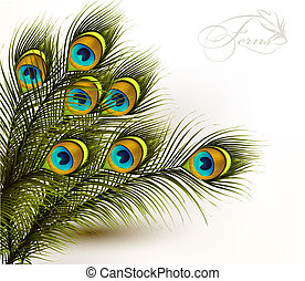 Peacock vector colorful ferns on a white background - Cute...