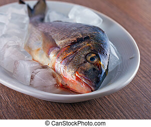 Bream - A bream with ice in a white plate