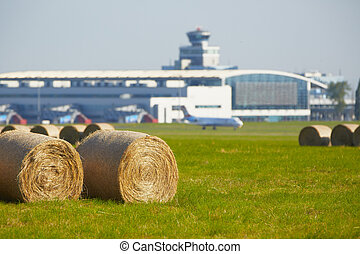 Airport - Hay bales in meadow at Prague airport.