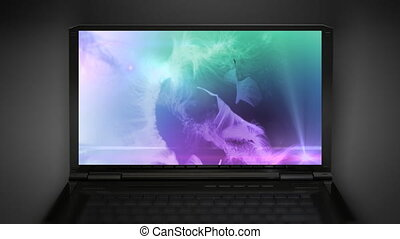 fur background color mix - screen saver at notebook computer